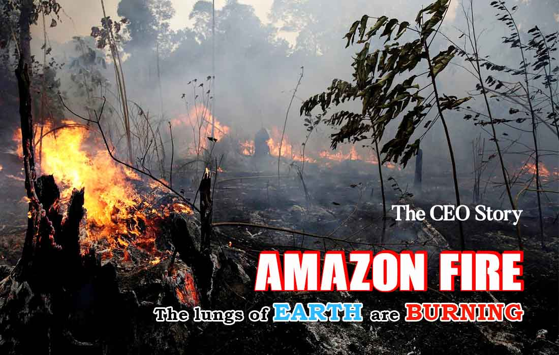 Amazon Rainforest Fires The Ceo Story